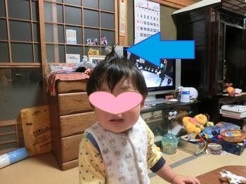 CIMG6389.jpg